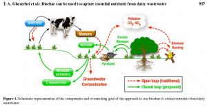 dairy wastewater
