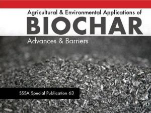 new biochar book